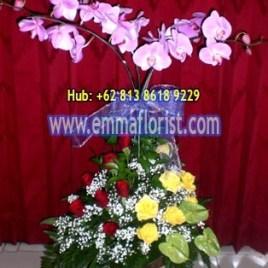 Rangkaian Bunga Anggrek Bulan Ungu