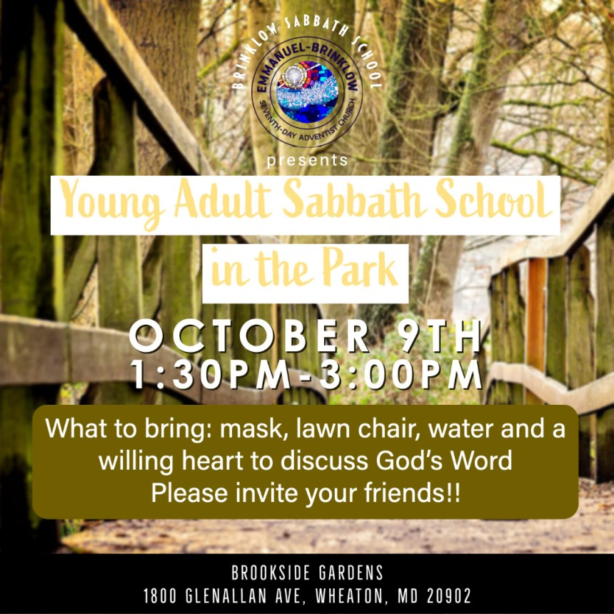 BRINKLOW YOUNG ADULTS SABBATH SCHOOL IN THE PARK – Oct 9