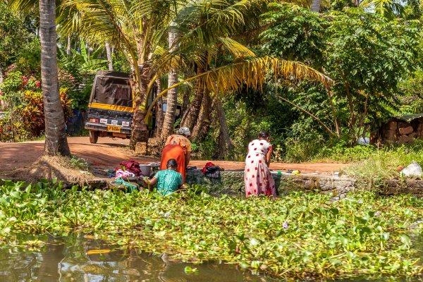 Photo Couleur Kerala Backwaters Alleppey