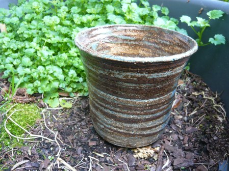 Pot plantes