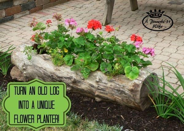 log-planter_001
