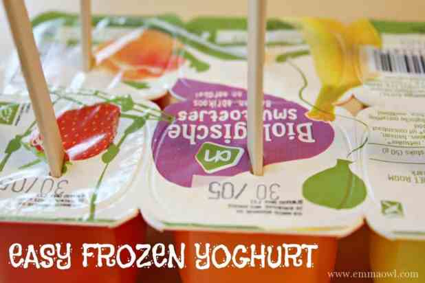 EASY frozen yoghurt