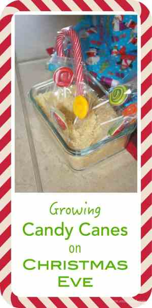 This is such a fun Kids activity - we loved it and look forward to it every year!