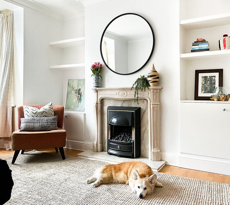 Corgi in Edwardian living room makeover