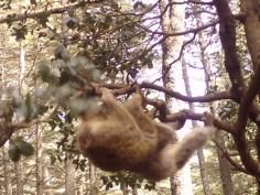 Just hangin' around.