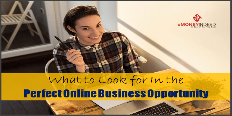What to Look for In the Perfect Online Business Opportunity