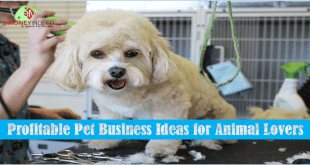 7 Profitable Pet Business Ideas for Animal Lovers