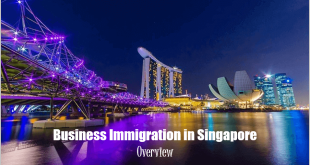 Business-Immigration-in-Singapore
