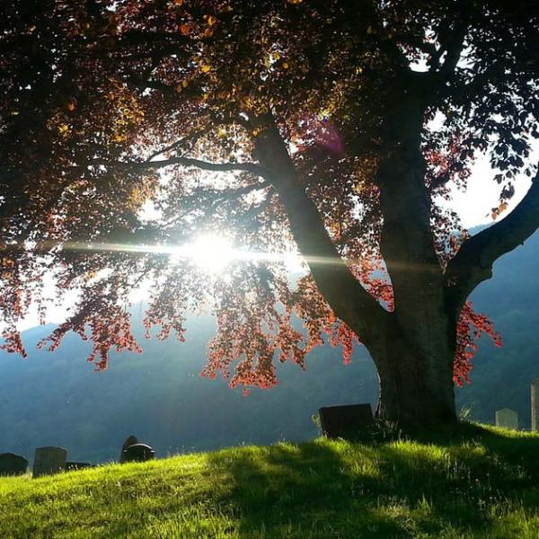 The Usefulness of Grief: Ambiguous Loss & How to be Present with Those Grieving