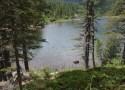 Cosa vedere in Trentino Val di Sole