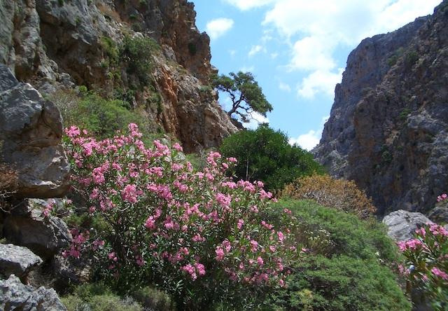 Cosa vedere a Creta