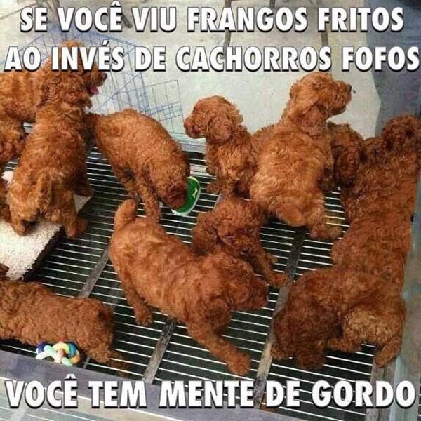 frangos-fritos