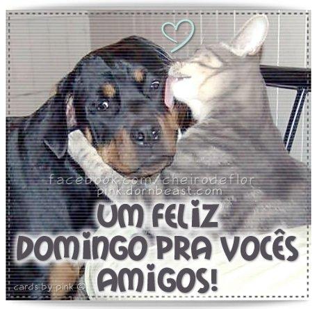 um-feliz-domingo-512a6a2684840