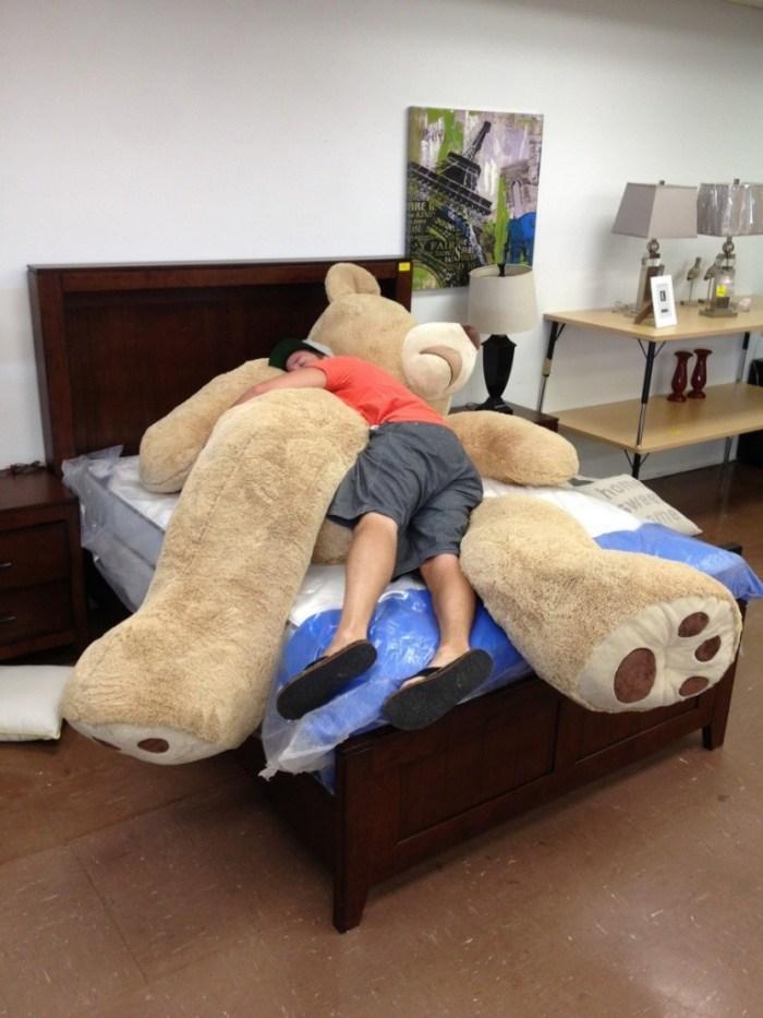 Ursos De Pel 250 Cia Gigantes