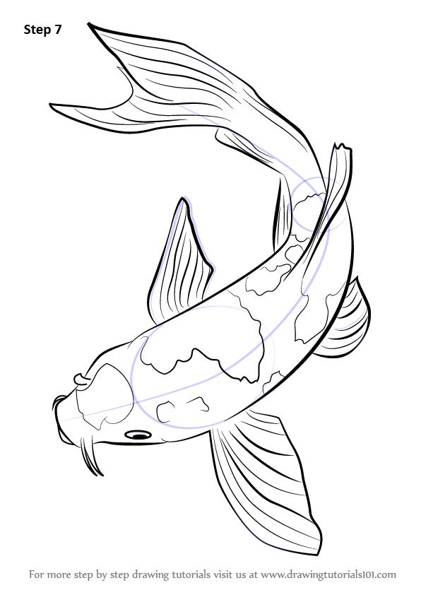 how-to-draw-Koi-Fish-step-7