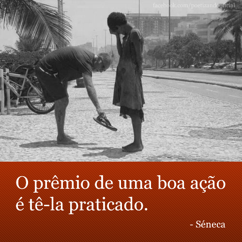 seneca-04