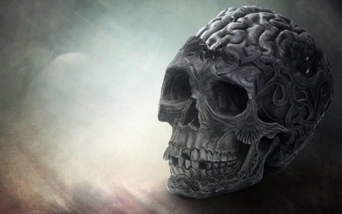 brain-skull-wide