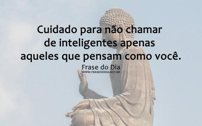 cuidado_para_não_chamar_de_inteligente_apenas_7