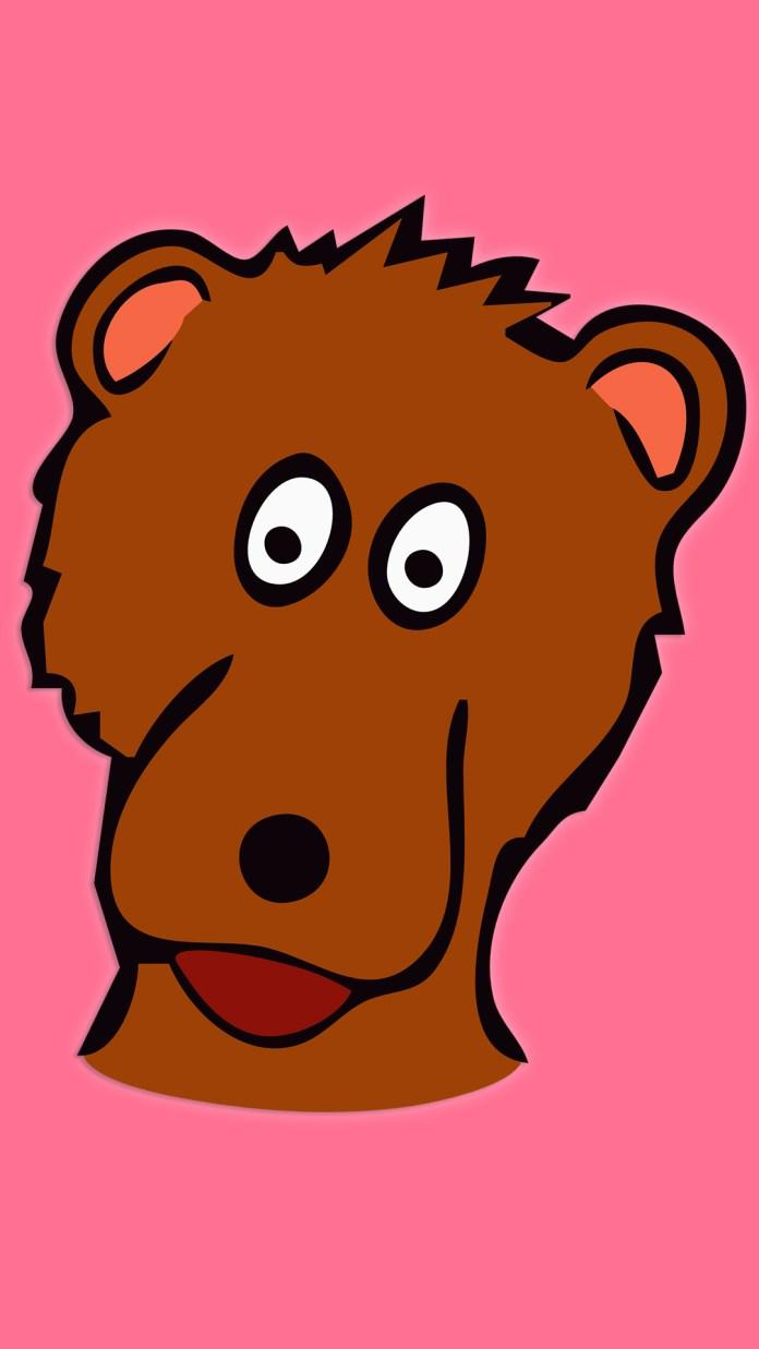 cute-bear-5547