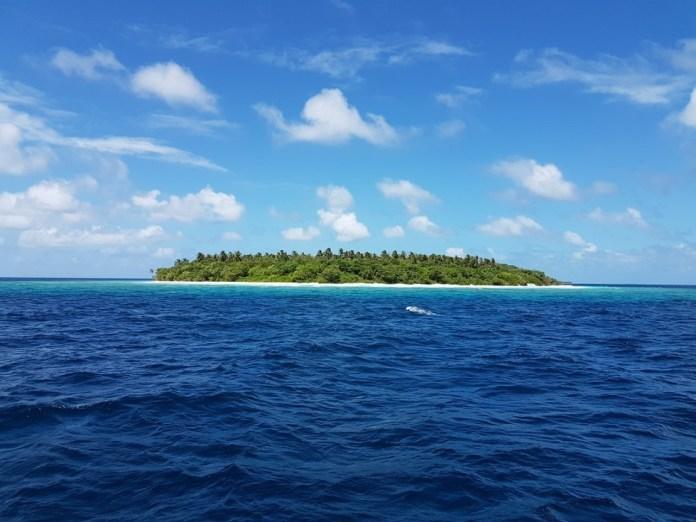 desert-island (3)