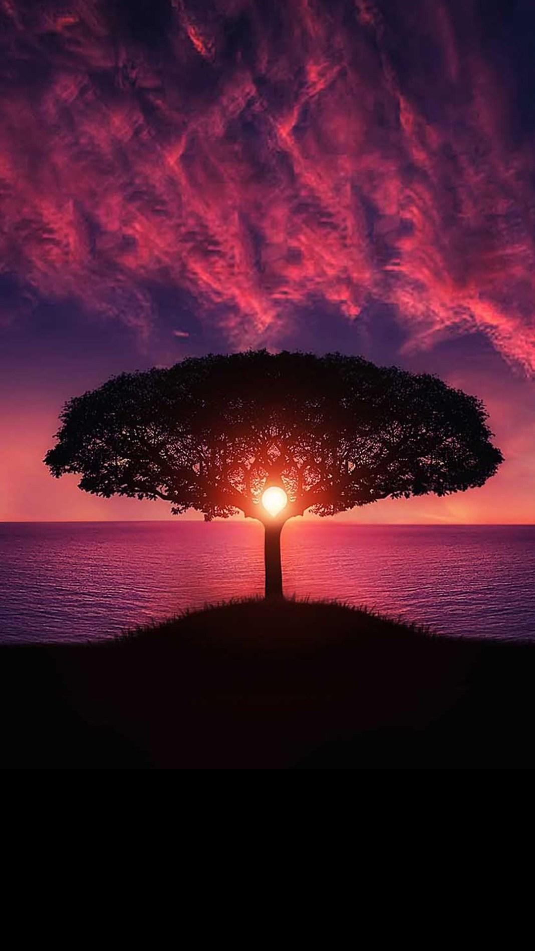magic-sunset-4587