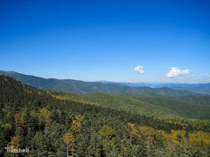 124-pujon-county-woodlands