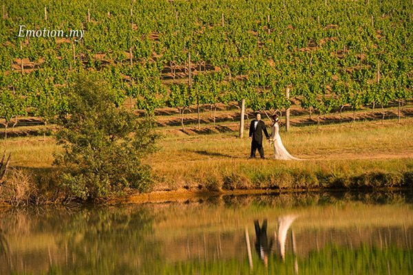portraits-hunter-valley-australia-sydney-vineyard-reflection