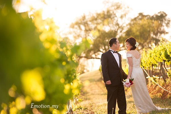 portraits-hunter-valley-australia-vineyard-asian-couple