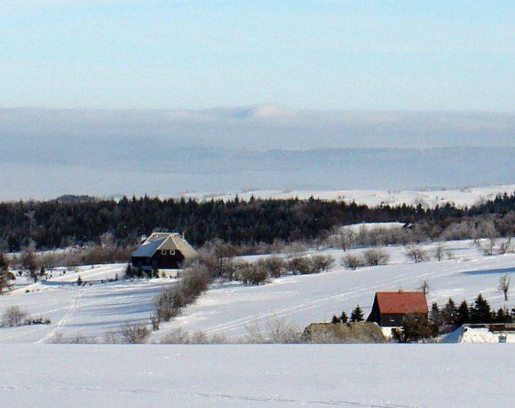 Pohled na Cínovec