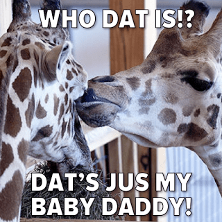 April The Giraffe Baby Daddy Memes