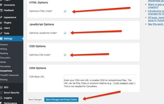 Affiliate Marketing Blog - WordPress Speed - Autoptimize Settings