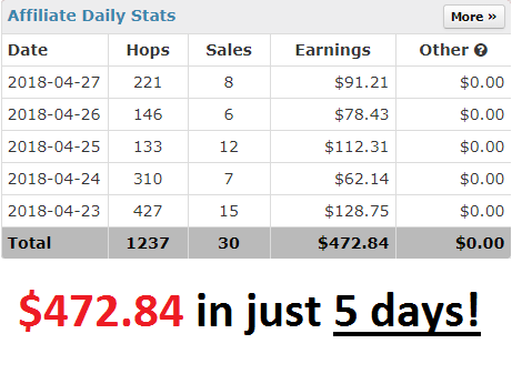 The Profit Epiphany Review : Skills You Need - 5 day income proof - April 2018