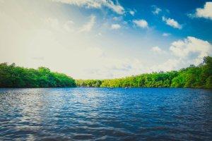 Couple kayaking on a lake