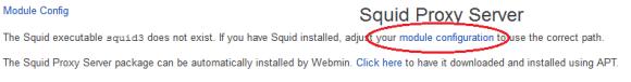 Squid Proxy