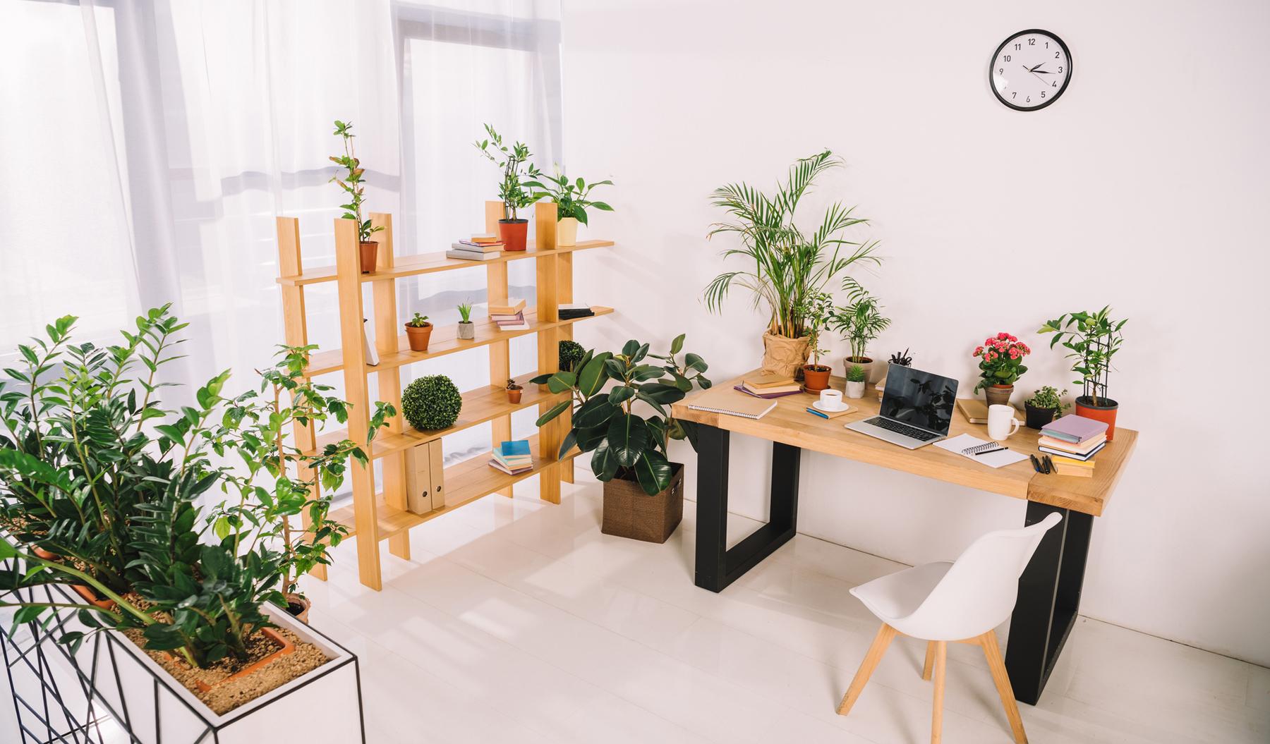 bureau côté jardin