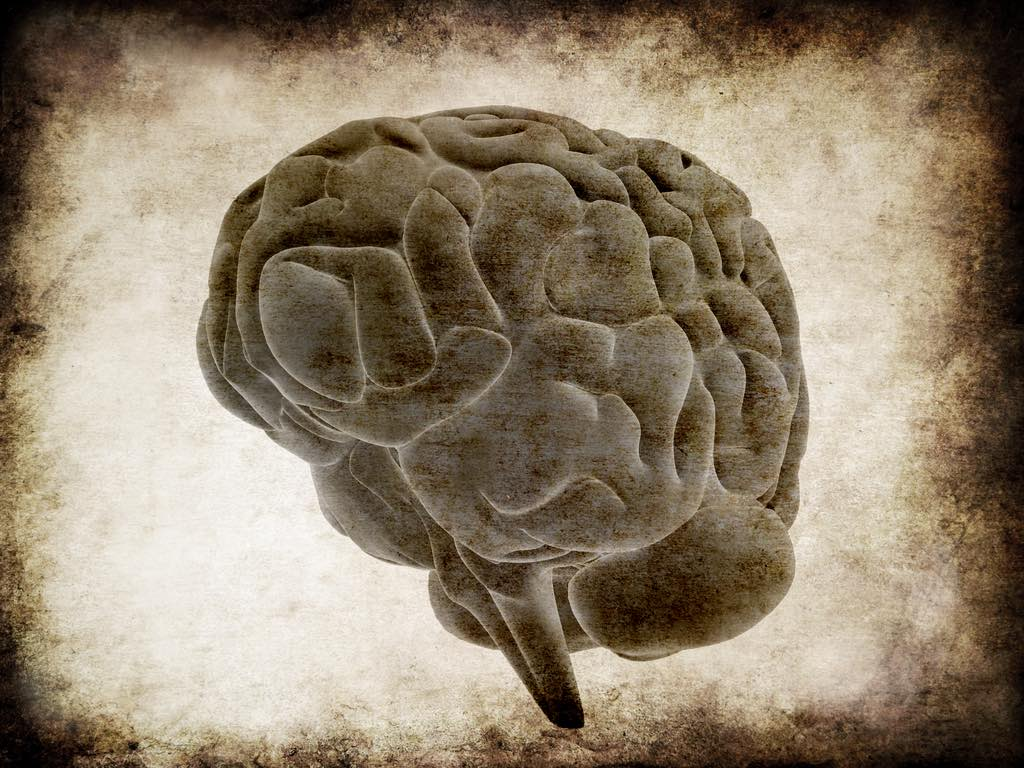 what the successful understand of the mind