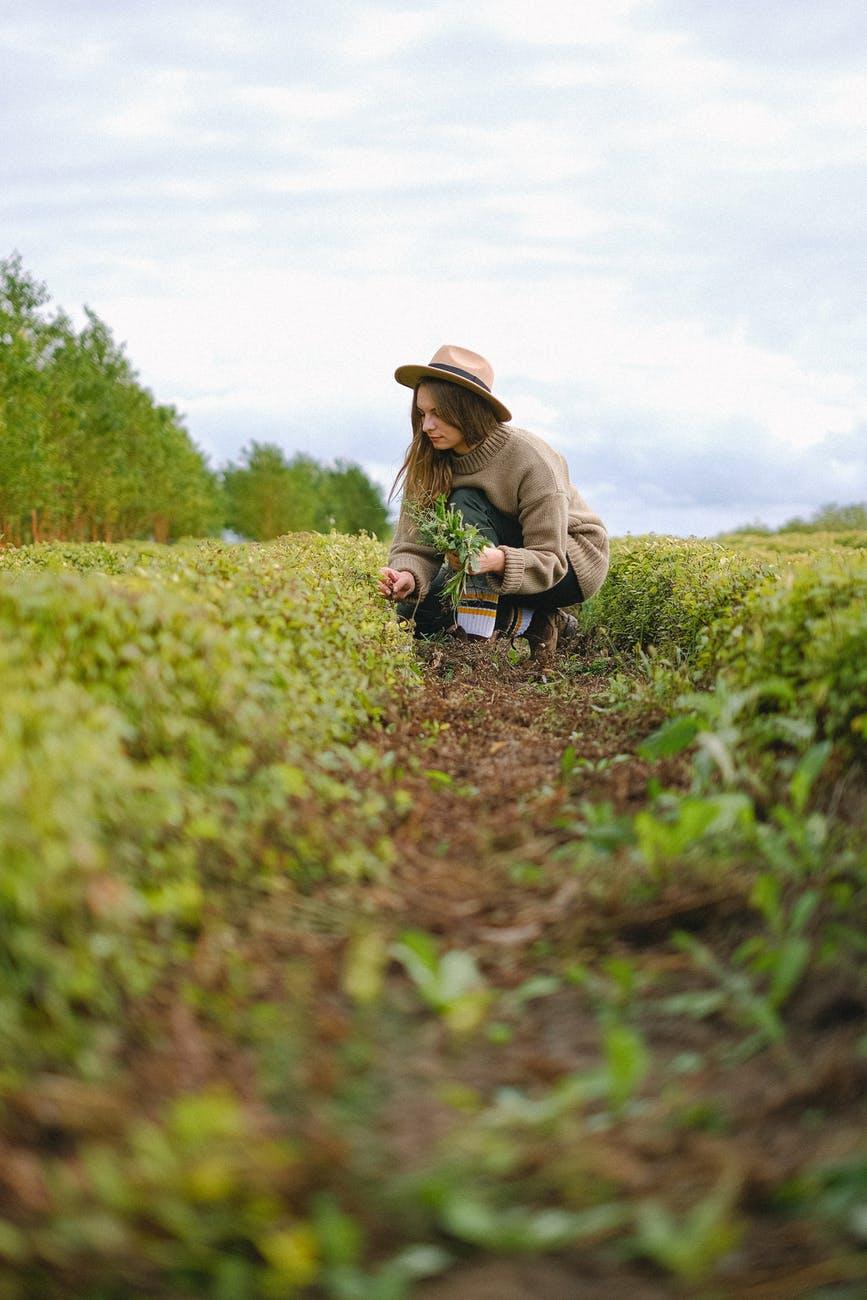 woman working near green bushes