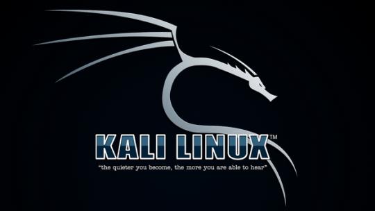 Kali Linux ifconfig & iwconfig Kullanımı