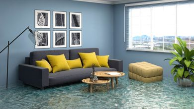 Photo of Water Damage Restoration Services in Toronto