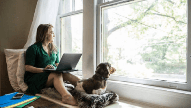 Photo of 6 Significant Truths Concerning Finding a Work from Home Job You Probably Don't Know (But Certainly Should)