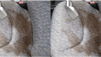 Photo of Facts Regarding Upholstery Cleaning That You Need To Know