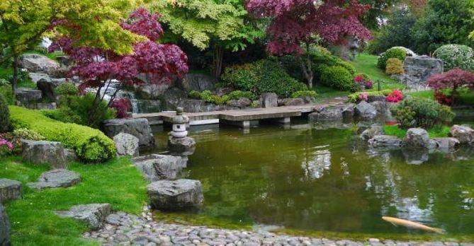 Best pond pumps reviews