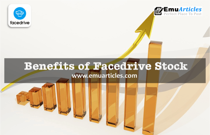 Benefits of Facedrive Stock