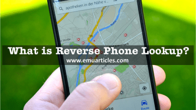 Photo of What is Reverse Phone Lookup