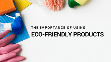 Photo of Why Are Eco-friendly Products Important?