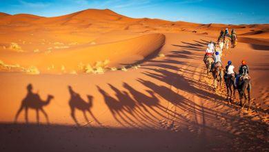 Photo of Magical Tour: Desert Safari in Dubai