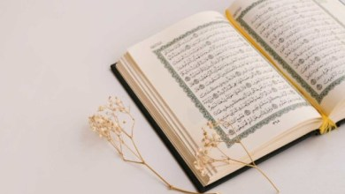 Photo of Most Important Tips for Choosing Online Quran Classes