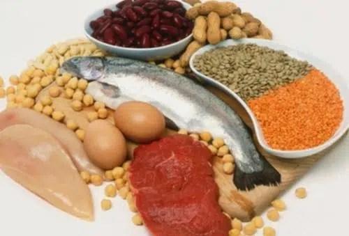 Consume las proteínas necesarias