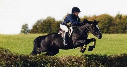 Deporte al aire libre: Equitación