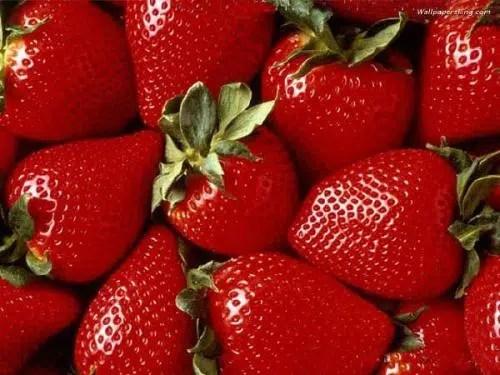 Descubre cuales son los mejores alimentos para nuestra salud. Parte I.
